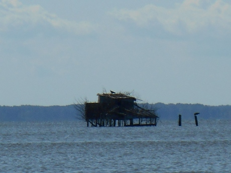 july 25, 2014 beach 024